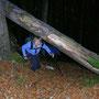 Zur Abwechslung gehts mal auf einem Wildwechselpfad bergauf