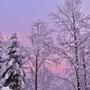 Tolle Winterstimmung