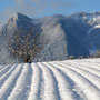 Balmfluhchöpfli mit Rötifluh im Winter vom Reckenacker aus gesehen