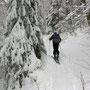 Wunderschöne Winterbilder