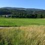 Alpfelen mit Farnerer Schattenberg im Hintergrund