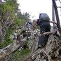 Es hat viele Hindernisse auf dem Dilitschchopf Westgrat am Donnerstag Abend, 24. Mai 2012
