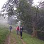 Mitte Juni wandern wir auf 1400m im Herbstnebel