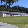 Oberer Grenchenberg