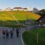 gewöhnungsbedürftiger Anblick auf dem Hügel oben