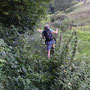 Die Wanderleiterin geht vorbildlich in kurzen Hosen durch Brombeeren und Nesseln