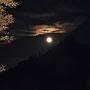Mond hinter der Rötifluh