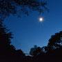 Der längste Tag naht, auch um elf Uhr brauchen wir die Stirnlampen nur im Wald