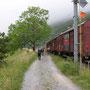 In Vallorbe haben wir nur Güterwagen auf dem Foto. Der TGV ist zu schnell vorbei gebraust.