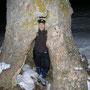 Kurzer Abstecher zum Hohlen Baum