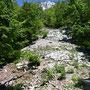 imposanter Hochblick unten an der grossen Risi, 600 Höhenmeter steil hinauf zum Chöpfli