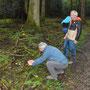 Erste Pilze werden fotografiert