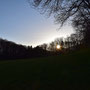 Sonnenuntergang im Balmberg
