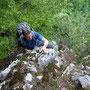 Donnerstagswanderung am 22. Mai 2008 auf unserer Lieblingsroute am Ostgrat