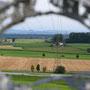Getreideernte im Attiswiler Feld