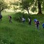 Hinein ins hohe Gras, aber jederzeit auf dem Wanderweg