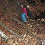 Kampf durch die Baumkrone auf dem Giesserwägli