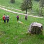 Vom Schattenberg Richtung Horngraben hinunter