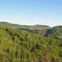 Blick vom Grat nach rechts Richtung Hauenstein