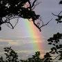 Selten schöner Regenbogen