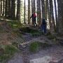 in wunderschönem Nadelwald im Naturschutzgebiet