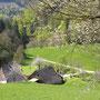 Ein selten schönes Heimetli im Abstieg nach Bärenwil
