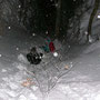Und geht mit Priska in den Schnee