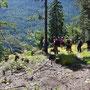 Abstieg auf dem westlichen Wolfsschluchtgrat