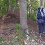 Vorbei am grössten Ameisenhaufen der Nordwestschweiz