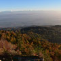 Blick Richtung Alpen