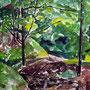 Rühle 2, 2008, Aquarell, 30 x 40 cm