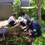 2010.5.22 作業の様子