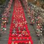 伊豆稲取 素盞嗚(すさのお)神社日本一118段 雛段飾り