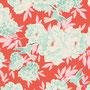 Hummingbird Coral