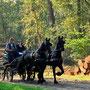 Mennen in de bossen van Appelscha 2011