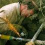Rohrleitungsbau Gas und Wasser