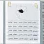 Jennifer Grimyser, paper works, 2008. One of nine silk screen prints.