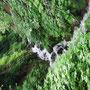 板山川源流①