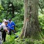 いつも一本杉で束の間の休憩