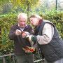 Erste Handgriffe im Kräutergarten