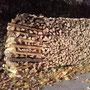 Holz ein zentrales Element in unserem Alltag