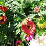 Среди цветов (автор - И.Кузнецова)