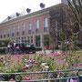 Mairie avril 2008