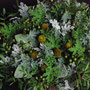 Flower Arrangement 43