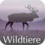 Wildtiere Europa