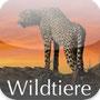 Wildtiere Namibia