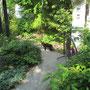哲学の道を歩く黒猫のたびちゃん