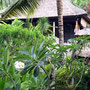 Property for sale in Bali.  Direct contact with owner. East Bali.