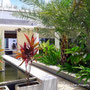 Sanur villa for sale freehold, owners direct.