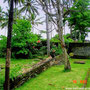 Pekutatan, West Bali land for sale by owner